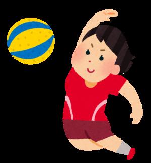ソフトバレーボール.png